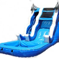 Large Dolphin Water Slide