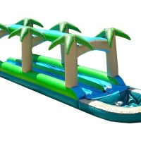 Double Lane Tropical Water Slide