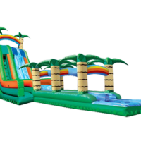 65' Tropical 2 Lane Slide Slip N Splash Combo