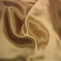 Shantung Coffee Napkin
