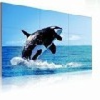 Orion Video Wall MIS4220 Seamless Panel
