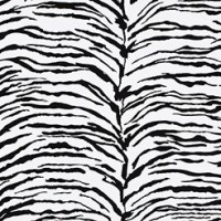 Wild Zebra Spandex Chair Cover