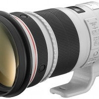 Canon 300mm F/2.8 IS II Lens