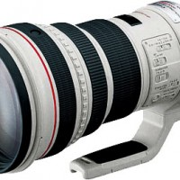 Canon 400mm F/2.8L IS Lens