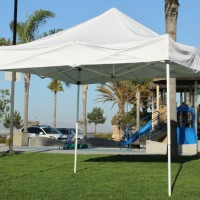 10' x 10' Ez Up Canopy