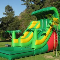 Green Wave Slide and Pool