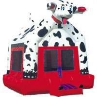 Dalmatian Moonbounce