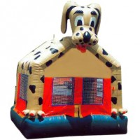 Dalmation Dog